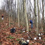 Surveys of the Blair Mountain battlefield in 2006