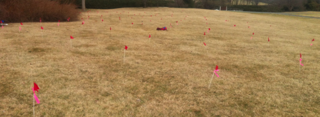 Archaeology Site GPS Layout with Flags